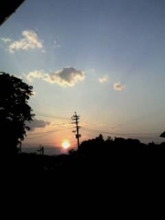 image/hukai-anani-otita-2006-06-03T20:45:42-1.jpg
